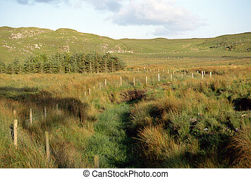 Moors and countryside in Ireland - Overview of moors and...
