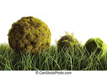 moos, bedeckt, kugeln, liegende , in, großes gras