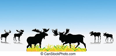 moose collection color vector illustration