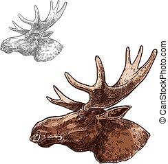 Moose elk muzzle profile vector isolated sketch