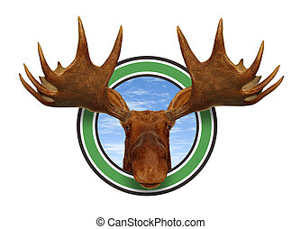 Moose Head Front - Moose head front view of antlers forest...