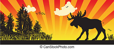 Moose in the woods, creative vector illustration of hunting.