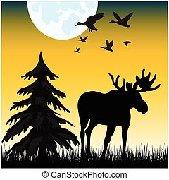 The Silhouette moose on glade in the night. Vector illustration