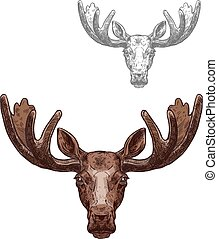 Moose or elk wild animal head isolated sketch