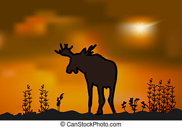 Moose silhouette at sunset