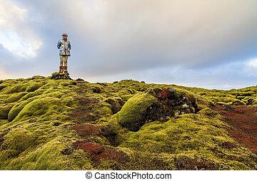 moosig, landschaftsbild, island