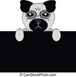Mops dog on white background
