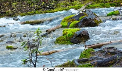 Moraine lake inlet creek in Banff National Park, Canada,...