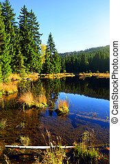 Moraine lake Kleiner Arbersee in National park Bavarian forest.