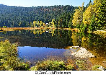 Moraine lake Kleiner Arbersee in National park Bavarian forest,Germany.