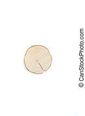 morceau, isolated., sommet arbre, annuel, anneaux, pin, arrière-plan., section transversale, bois, vue, blanc, gros plan