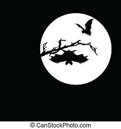 morcego, vetorial, silhuetas, lua