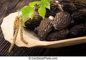 morchella, fresco,  conica, estacional, hongos