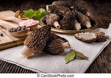 morchella, fresco,  conica, hongos, estacional