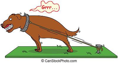 mordedura, nunca, perro ladrando