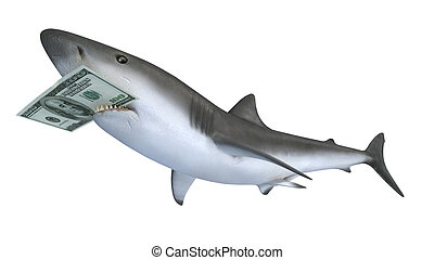 mordre, requin, dollar, billet banque