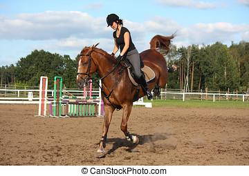 morena, mulher, montando, brincalhão, castanha, cavalo