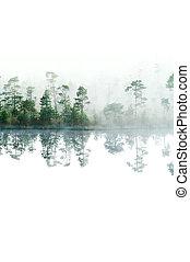 morgon, in, taiga, forest., dimma, på, den, yta, av, water.,...