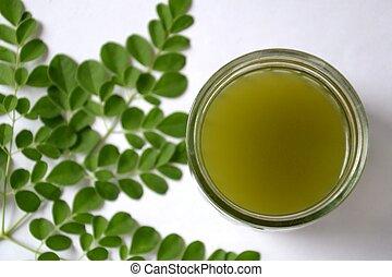 Photograph image of a moringa oleifera, horse radish, malunggay, kamunggay leaf and tea.