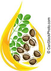 Moringa oleifera oil. Stylized drop. Vector illustration on...