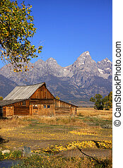 Mormon barn - Mormon row barn in Grand Tetons national park