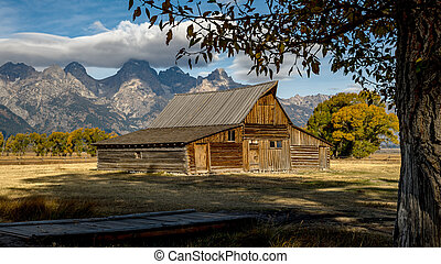 Mormon Row Barn in the Tetons in Wyoming fall