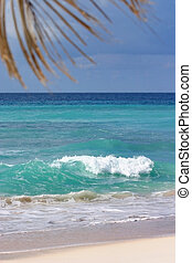 Morning breeze - Dover beach, Barbados. Single white wave...