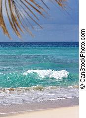 Morning breeze - Dover beach, Barbados. Single white wave...