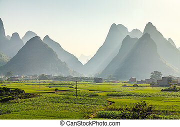 Morning dew over limestone rock formations in South China