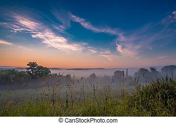 Morning fog in a ravine at sunrise