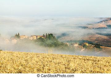 Morning fog in Tuscany, Italy