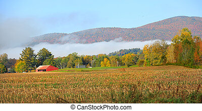 Morning fog in Vermont