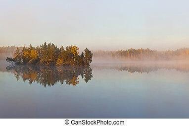 Morning fog on forest lake