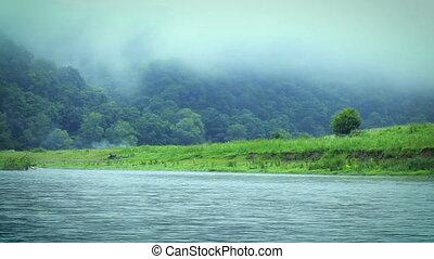 Morning fog on the Dniester River. Ukraine