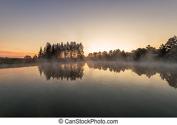 Morning fog on the forest lake,