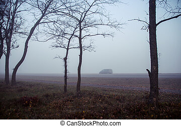 Morning fog on the road. Autumn forest at sunrise