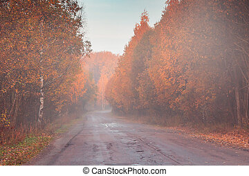 Morning fog on the road through the autumn forest at sunrise