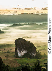 Morning fog over the ground at Phulangka