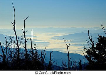 Morning Fog, Smoky Mountains