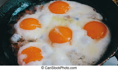 Morning fried eggs is roasted in a pan on the home kitchen