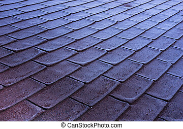 Morning frost icing on red shingles roof