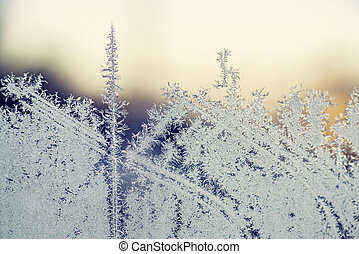 Morning frost on a window in the sunrise