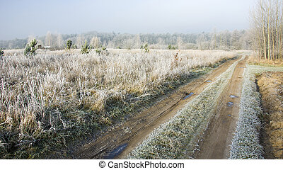 Morning frost on the meadow and dirt road