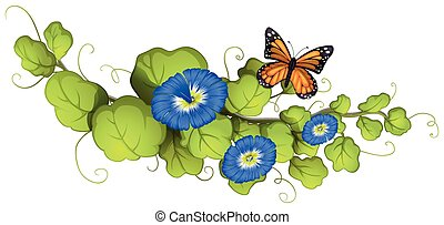 Morning glory and butterfly illustration