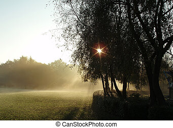 Morning has broken in a peaceful scenario and like paradise