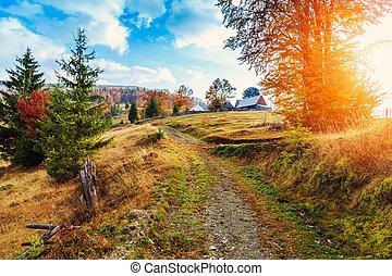 Morning in Carpathians mountain Transylvania