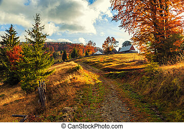 Morning in Carpathians mountain Transylvania