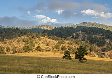 morning in Colorado foothills of Rocky Mountains