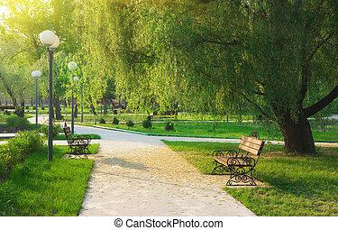 Morning in park