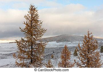 autumn mountains after snowfall